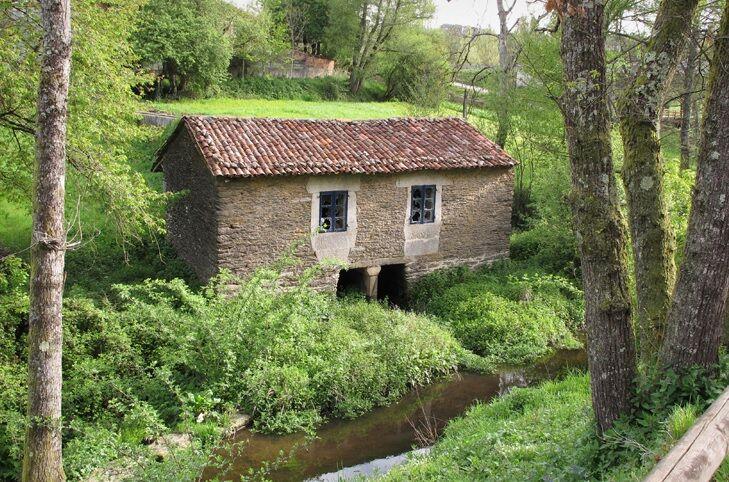 Ley de Nietos y Repoblación del rural España